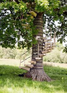 お年寄りでも簡単に木に登れる!木につける階段が面白い!の画像(3枚目)