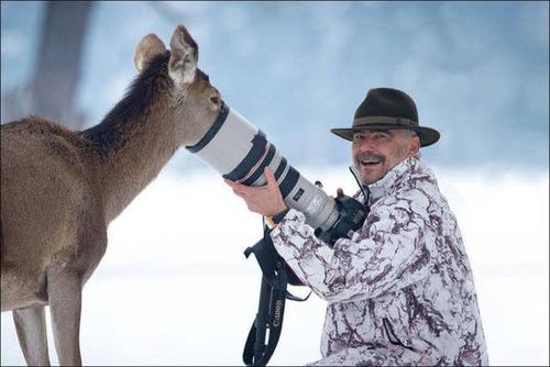 【画像】自然を撮影するカメラマンに興味津々の動物達!!の画像(5枚目)