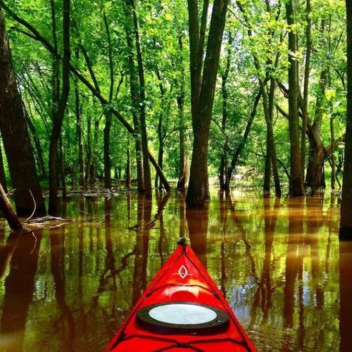 カヤック(カヌー)に乗る理由がわかる川沿いの風景の画像の数々!!の画像(20枚目)