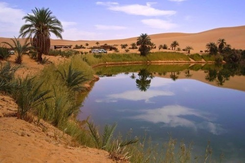 サハラ砂漠にある小さなオアシスが美しすぎて凄い!の画像(10枚目)
