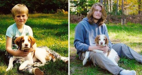 犬の成長の画像(33枚目)