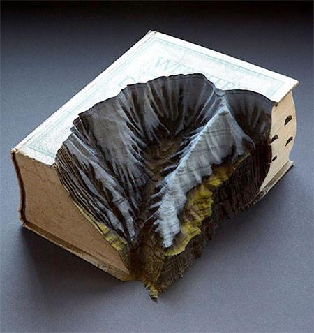 【画像】分厚い本が絶景になる!本を使ったアートが凄い!!の画像(11枚目)