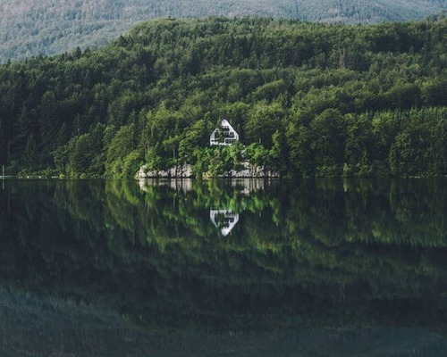森の中の隠れ家の画像(21枚目)