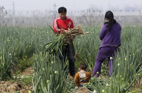 中国の日常生活をとらえた写真がなんとなく感慨深い!の画像(24枚目)