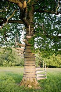 お年寄りでも簡単に木に登れる!木につける階段が面白い!の画像(8枚目)