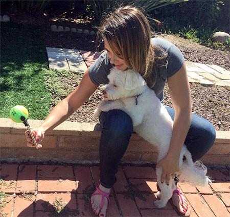 ワンちゃんニッコリ!ペットの犬をほぼ確実に可愛く撮影できるガジェット!!の画像(3枚目)