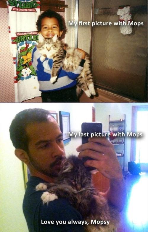 犬や猫の最初に撮った写真と最後に撮った写真の数々の画像(17枚目)