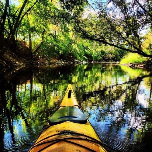 カヤック(カヌー)に乗る理由がわかる川沿いの風景の画像の数々!!の画像(14枚目)