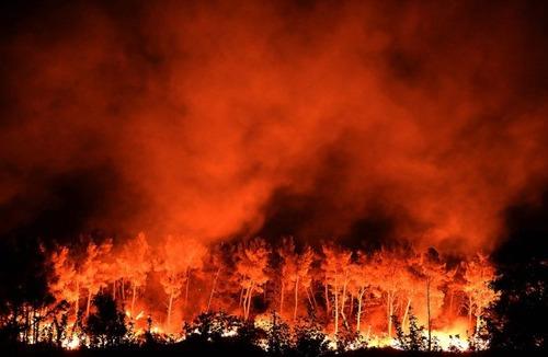 フランスのマルセイユの山火事の画像(1枚目)