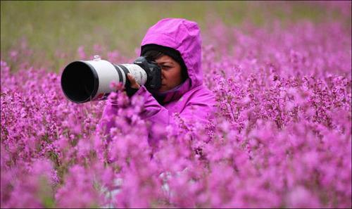 【画像】自然を撮影するカメラマンに興味津々の動物達!!の画像(4枚目)