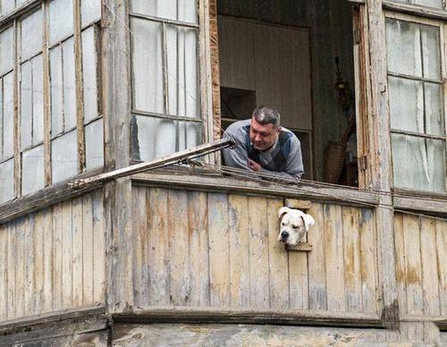 何てことは無いロシアの日常がやっぱりロシアという感じの画像の数々!!の画像(2枚目)