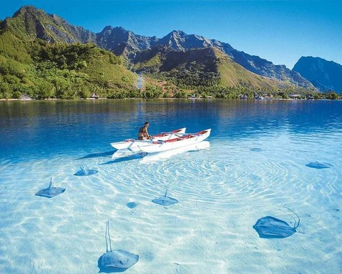 美しく神秘的な水辺の画像(3枚目)