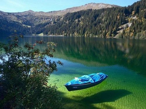 美しく神秘的な水辺の画像(14枚目)
