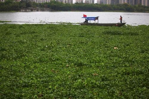 中国の日常生活をとらえた写真がなんとなく感慨深い!の画像(28枚目)