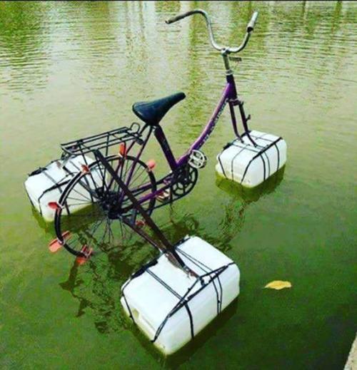 自転車にまつわるちょっと面白ネタ画像の数々!!の画像(39枚目)