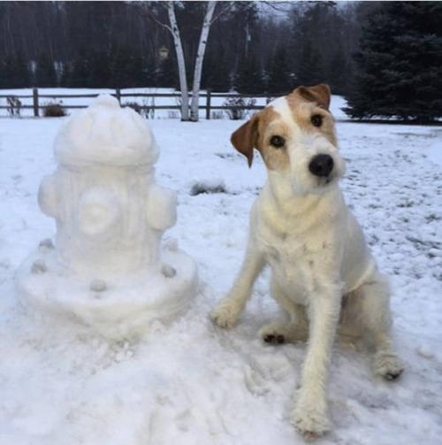 【画像】海外の雪祭りとか色々な雪像がやっぱ海外って感じで面白いwwwの画像(7枚目)