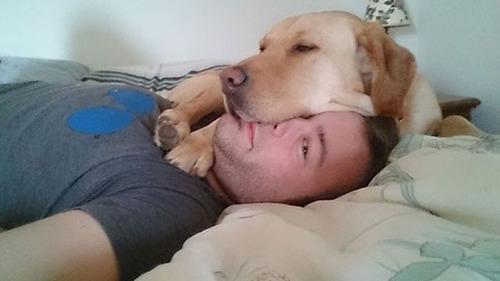 犬は可愛いけど、かなりジャマな感じの犬の画像の数々!!の画像(10枚目)