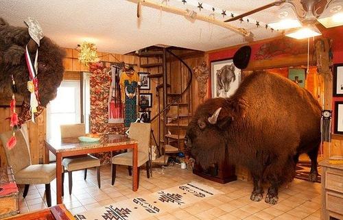 家の中でバイソンを飼っているの画像(4枚目)