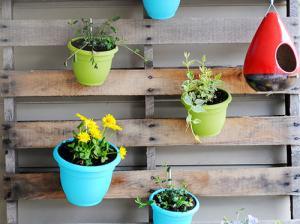 【画像】狭くても大丈夫!小さな植木が綺麗に飾れる工夫の数々!の画像(18枚目)