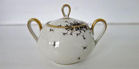 【画像】蟻が這い回っている柄の食器が悪趣味すぎるwwwの画像(1枚目)