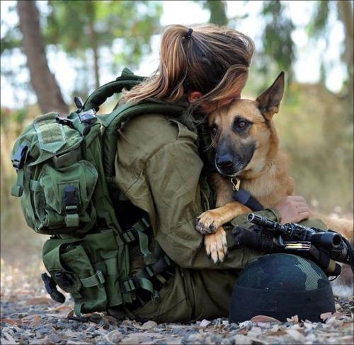 戦地での軍用犬の日常がわかるちょっと癒される画像の数々!!の画像(66枚目)