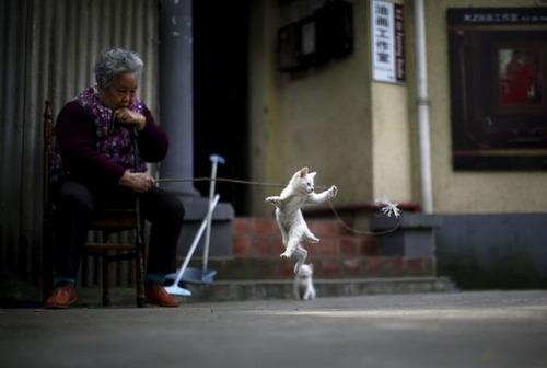中国の日常生活をとらえた写真がなんとなく感慨深い!の画像(32枚目)