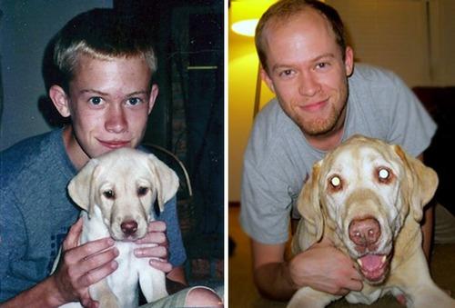 犬の成長の画像(31枚目)