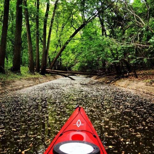 カヤック(カヌー)に乗る理由がわかる川沿いの風景の画像の数々!!の画像(11枚目)