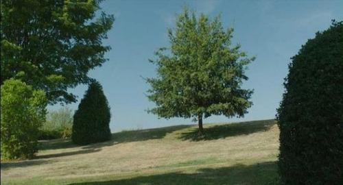 CGを使った特撮映画の舞台裏の画像(21枚目)