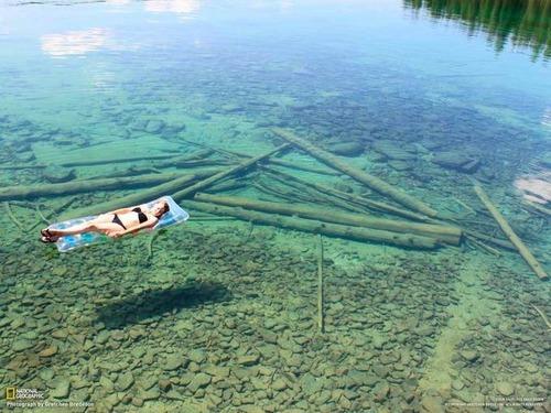 美しく神秘的な水辺の画像(16枚目)
