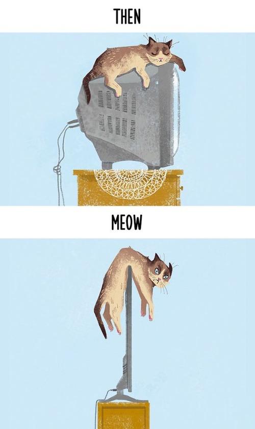 テクノロジーの進化がネコ達に与えた影響の比較画像の数々!!の画像(2枚目)