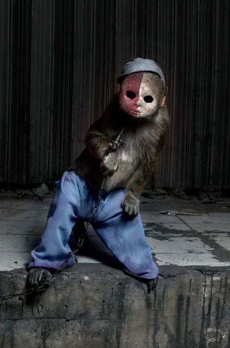 【画像】サルにマスクを被せたら凄まじく怖くなったwwwの画像(3枚目)