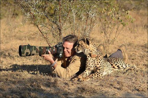 【画像】自然を撮影するカメラマンに興味津々の動物達!!の画像(10枚目)