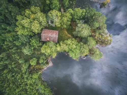 森の中の隠れ家の画像(1枚目)