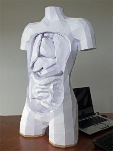 紙を使ったペーパークラフトの人体模型がなんだか凄い!!の画像(2枚目)