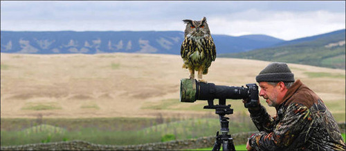 【画像】自然を撮影するカメラマンに興味津々の動物達!!の画像(22枚目)