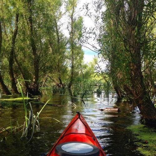 カヤック(カヌー)に乗る理由がわかる川沿いの風景の画像の数々!!の画像(29枚目)