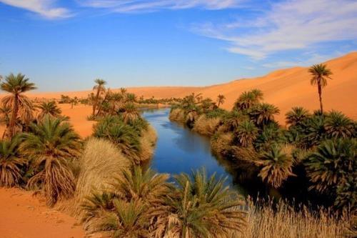 サハラ砂漠にある小さなオアシスが美しすぎて凄い!の画像(4枚目)
