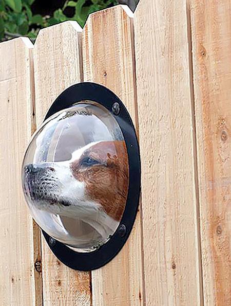 【画像】ワンちゃん大喜び!カッコいい犬用の窓!!の画像(6枚目)