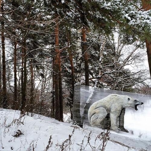 森の中の動物のペイント03