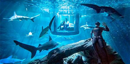 【画像】360度、水に囲まれたお部屋に泊まれるホテルが凄い!!!の画像(1枚目)