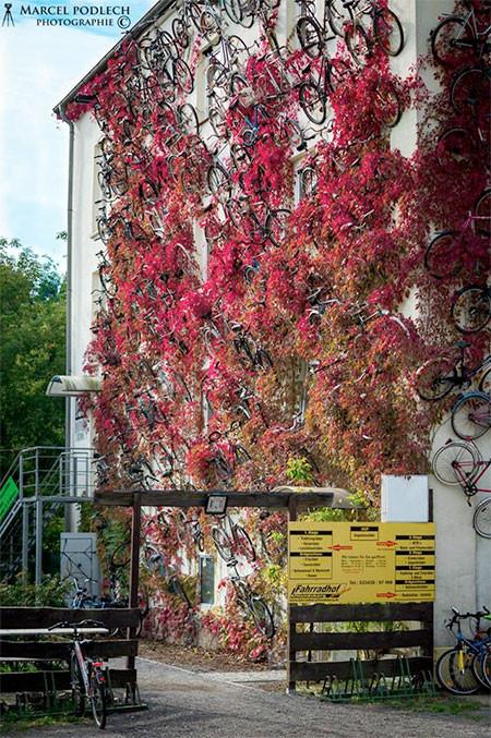 自転車を無数に壁に貼り付けた家の画像(4枚目)