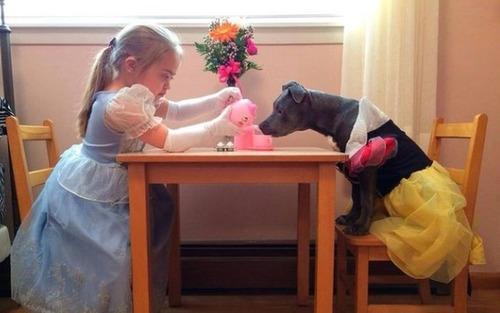 かわい過ぎる子犬の画像の数々!の画像(29枚目)