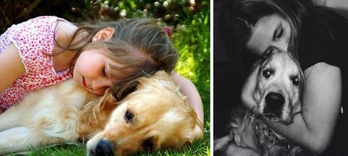 犬の成長の画像(23枚目)