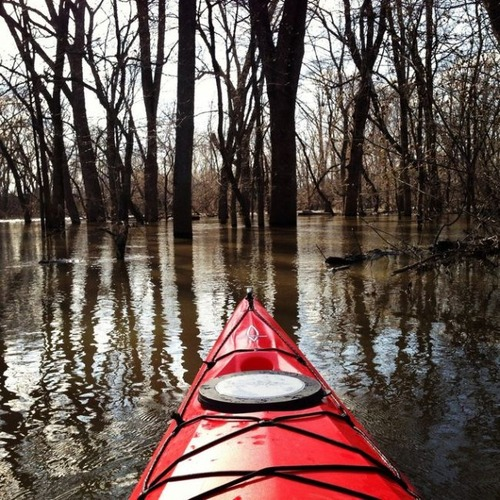 カヤック(カヌー)に乗る理由がわかる川沿いの風景の画像の数々!!の画像(21枚目)
