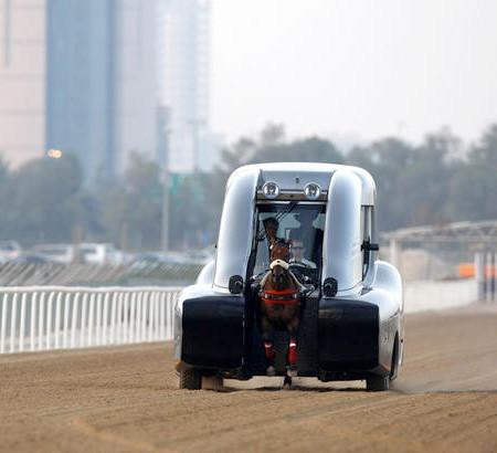 馬の力を利用した自動車の画像(3枚目)