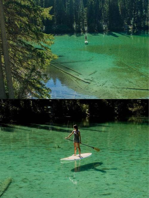 美しく神秘的な水辺の画像(18枚目)