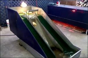 子供のアヒル用の滑り台の画像_000006732