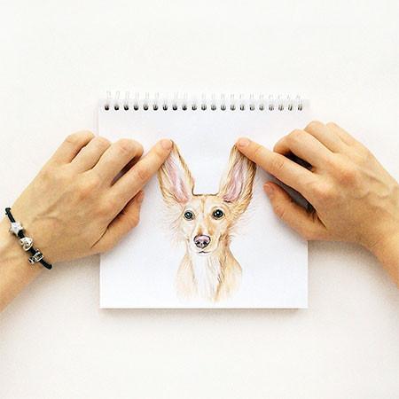 犬の絵が小道具1つで生きてるように見える!!の画像(12枚目)