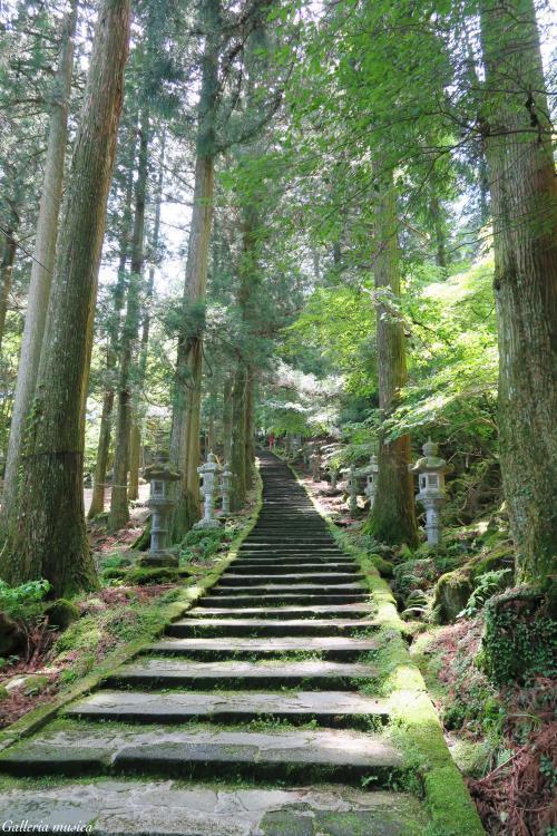 高住神社1